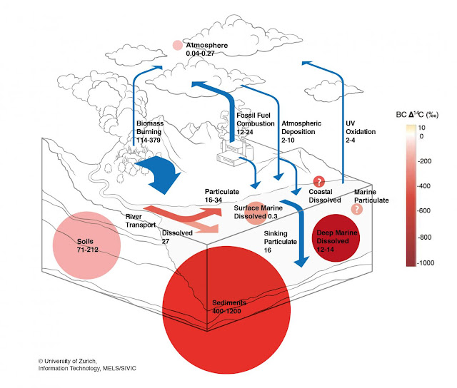 Charcoal: Major missing piece in the global carbon cycle