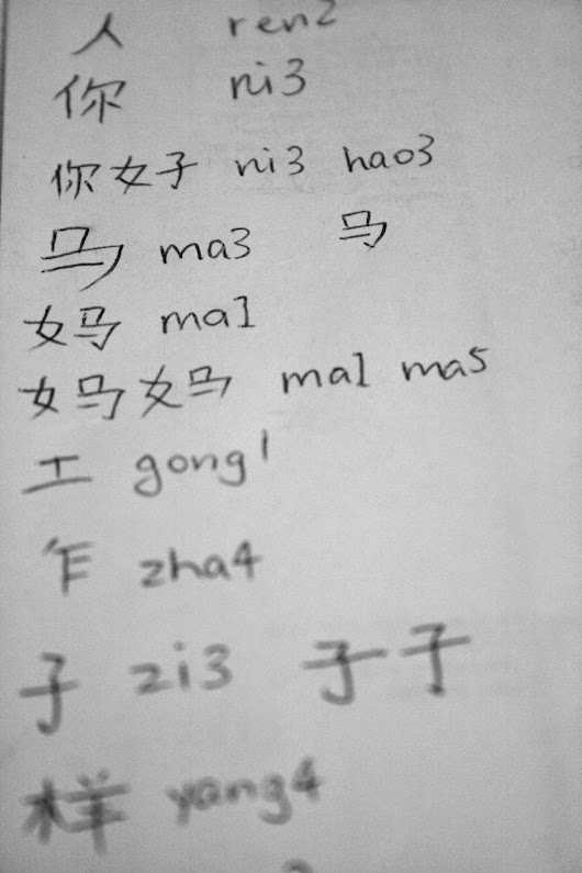 A Journey into Mandarin Chinese