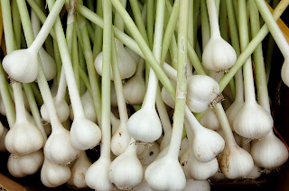garlic for h1n1 virus