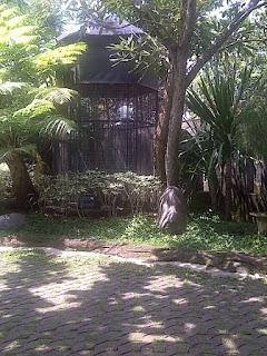 Burung Cucak Rowo - Cara sukses penangkaran burung cucakrowo ala Gunawan Wibisono - Penangkaran Burung Cucak Rowo