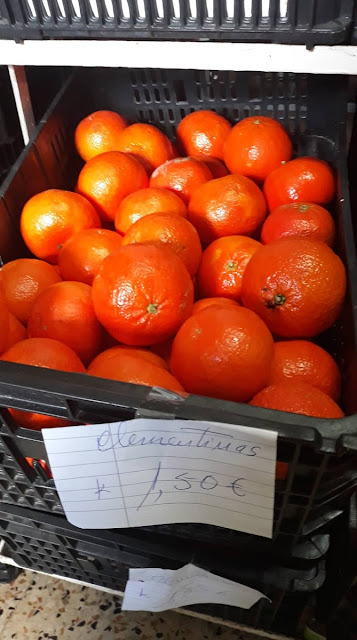 Clementinas do Algarve