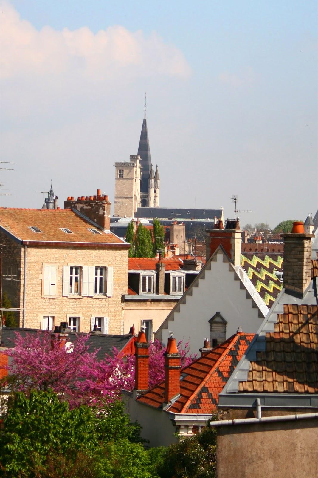 Toits de Dijon et Tour Philippe Le Bon