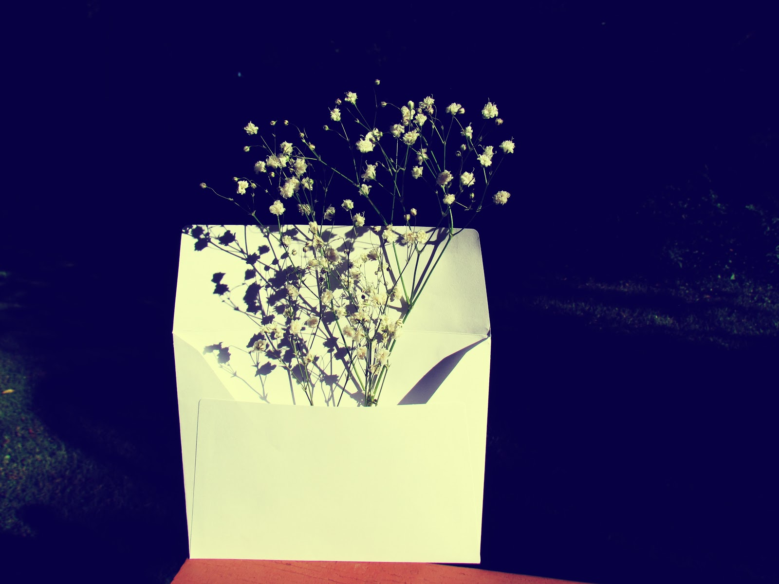 Nature Art Gift + Envelope in Gloom and Glow White + White Floral Arrangement