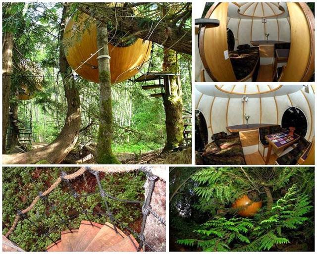Free Spirit Spheres Tree House