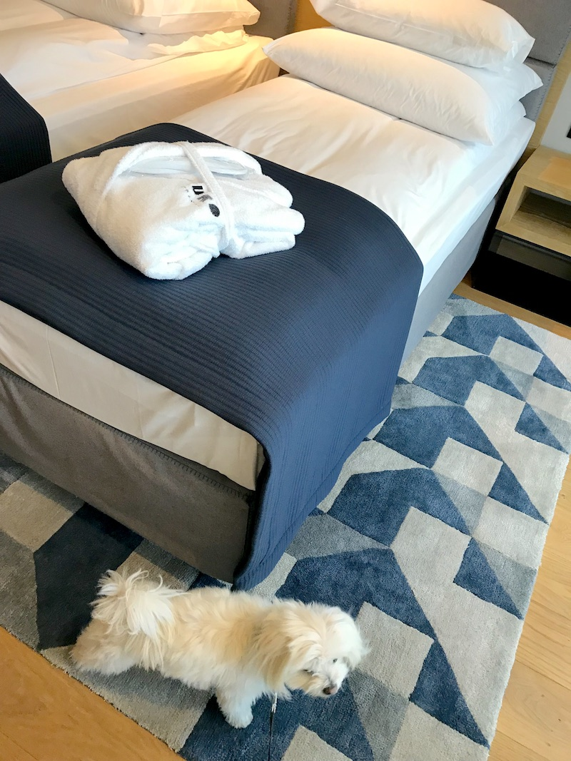 puro hotel z psem, puro hotel dogfriendly, wakacje z psem, hotel z psem, hotel pies