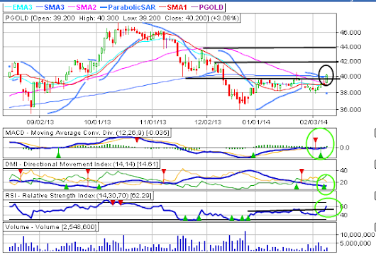 PGOLD Chart 2-10-14