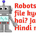 What is Robots.txt file in hindi aur SEO me Robots.txt ka importance jane.
