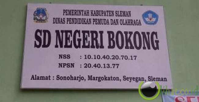 SDN Bokong