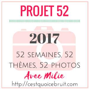 #17projet52