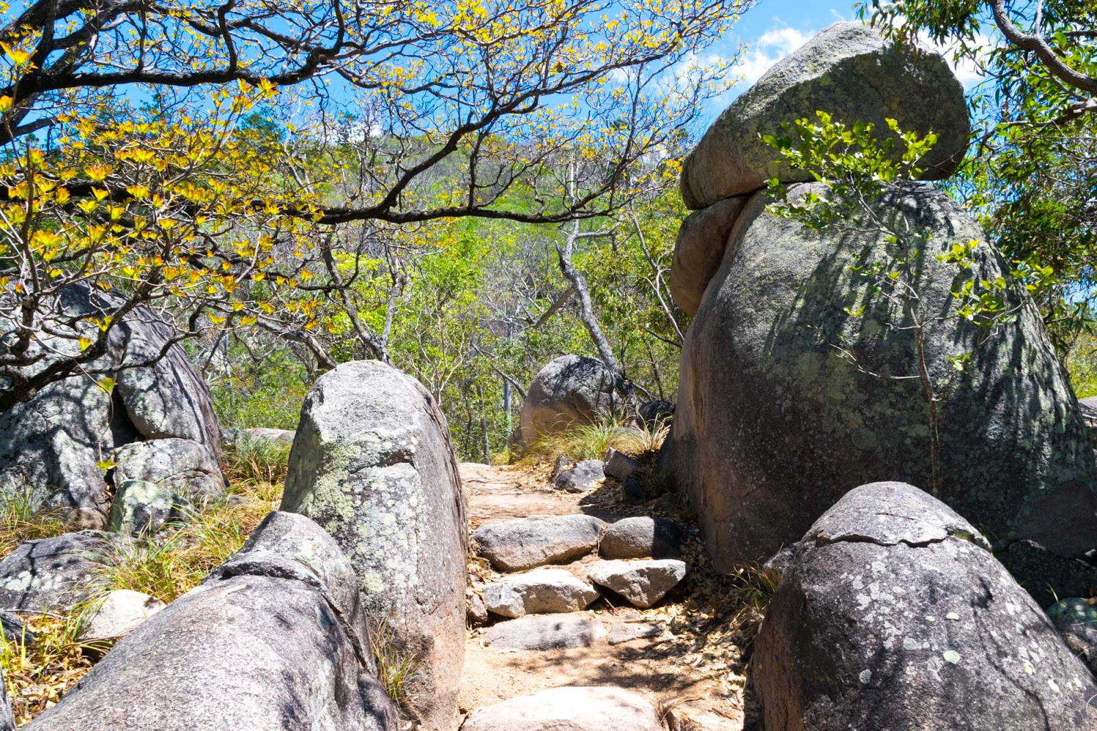 magnetic island hiking