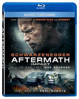 Aftermath 2017 Eng BRRip 480p 300mb ESub