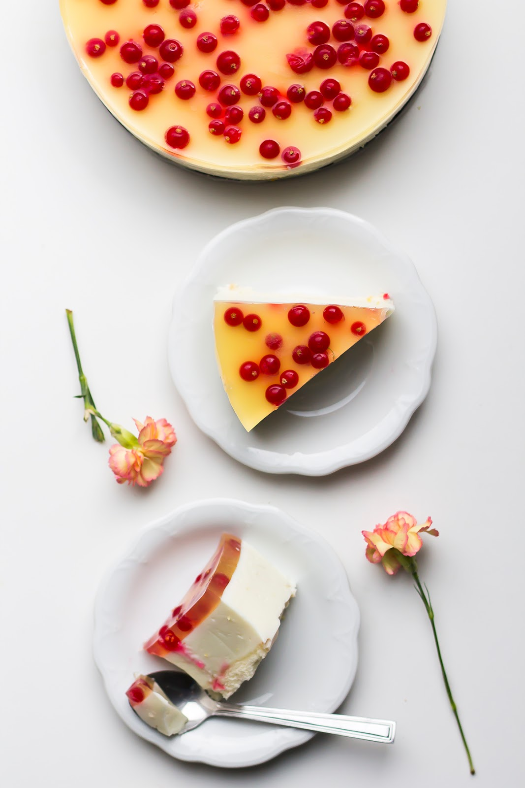 Coconut cheesecake with currant.