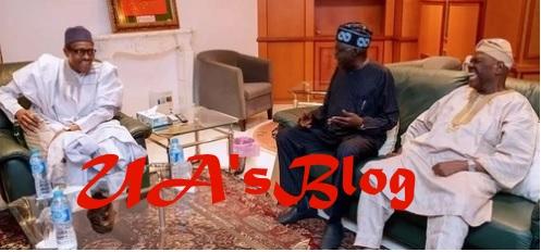 Why Bisi Akande and I met Buhari - Bola Tinubu