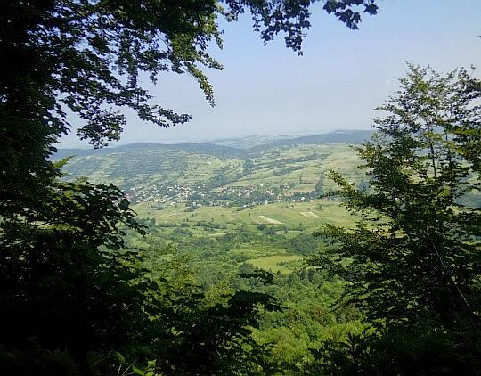 Dolina Jasionki