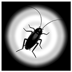 Cockroach Moving: Climbing Your Screen