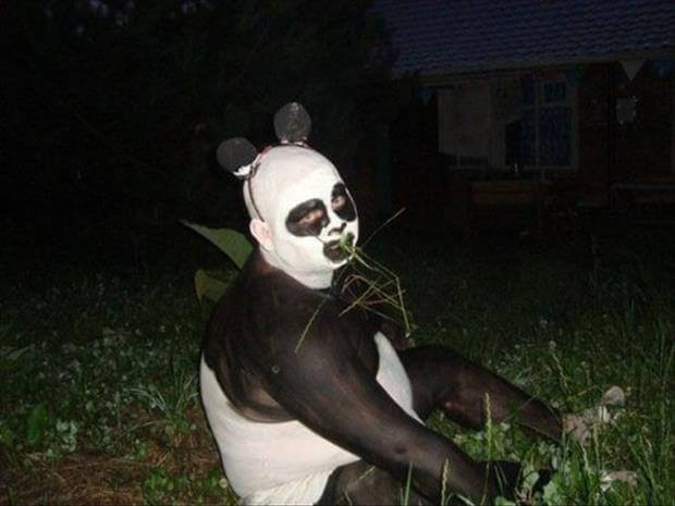 14 Hilarious Photos That Stand For The Real Definition Of Weird - Pandas do behave in a weird manner, don't they