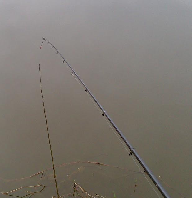 Los versos de la pesca para los niños corto