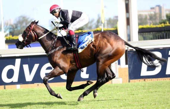 Ten Gun Salute - Duncan Howells - Muzi Yeni - Vodacom Durban July 2016