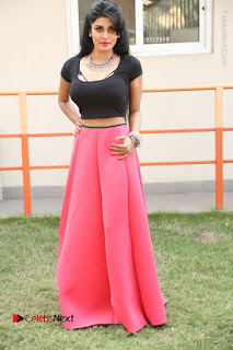 Telugu Actress Harini Stills at Dhyavudaa Movie Teaser Launch  0381.JPG