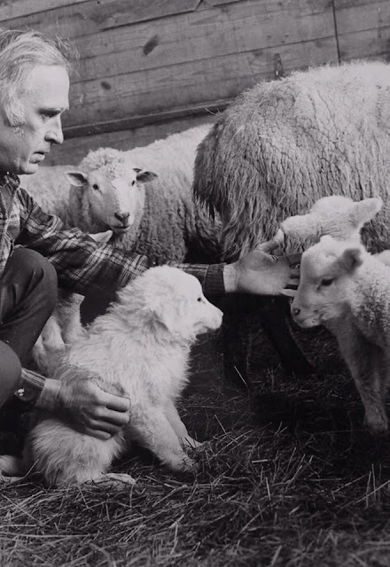 Adieu, Ray Coppinger and The Livestock Guardian Dog Project