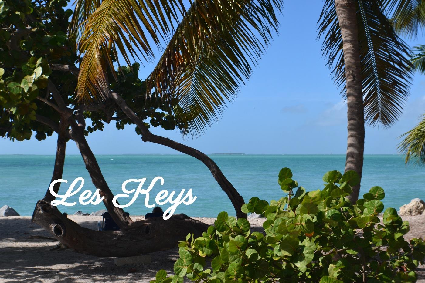 Plage paradisiaque à Key West