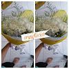 Kado Bunga Ulang Tahun Mawar Campur