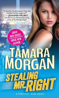 romance novel covers, contemporary romance, Stealing Mr. Right by Tamara Morgan