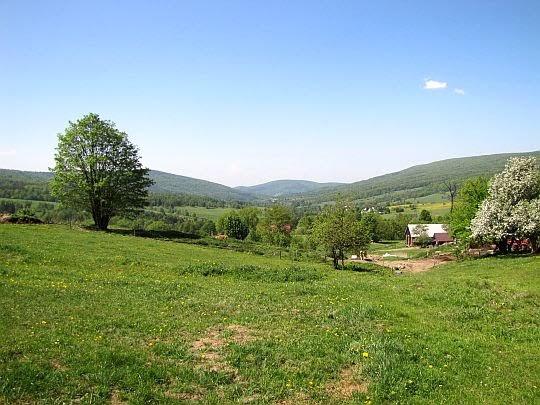 Dolina Bartnianki.