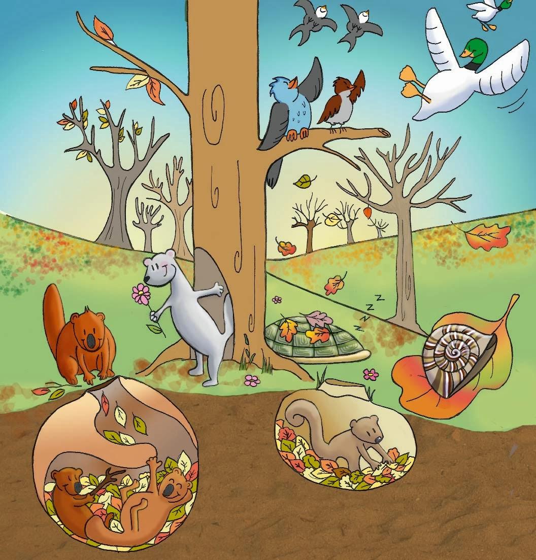 Animali In Letargo Racconti Fiabe Filastrocche E Non Solo