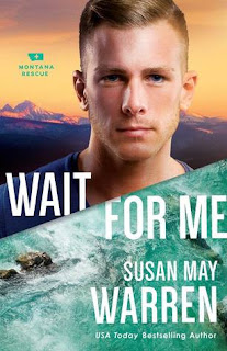 wait for me susan may warren