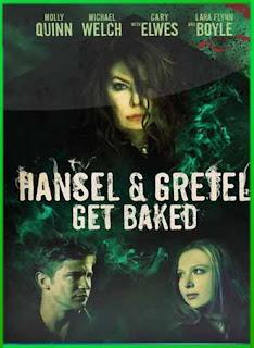 Hansel y Gretel La bruja del Bosque Negro (2013) | DVDRip Latino HD GDrive 1 Link