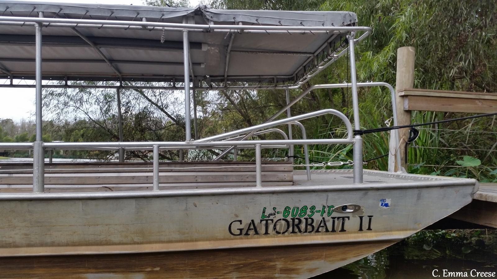 Swamp Tours New Orleans Alligators