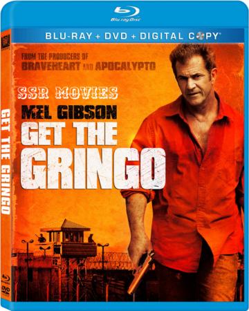 Get the Gringo (2012) Dual Audio Hindi 480p BluRay 300MB