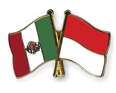 Bentuk Kerja Sama Indonesia dengan Amerika Serikat, Kanada, Meksiko, dan Brasil