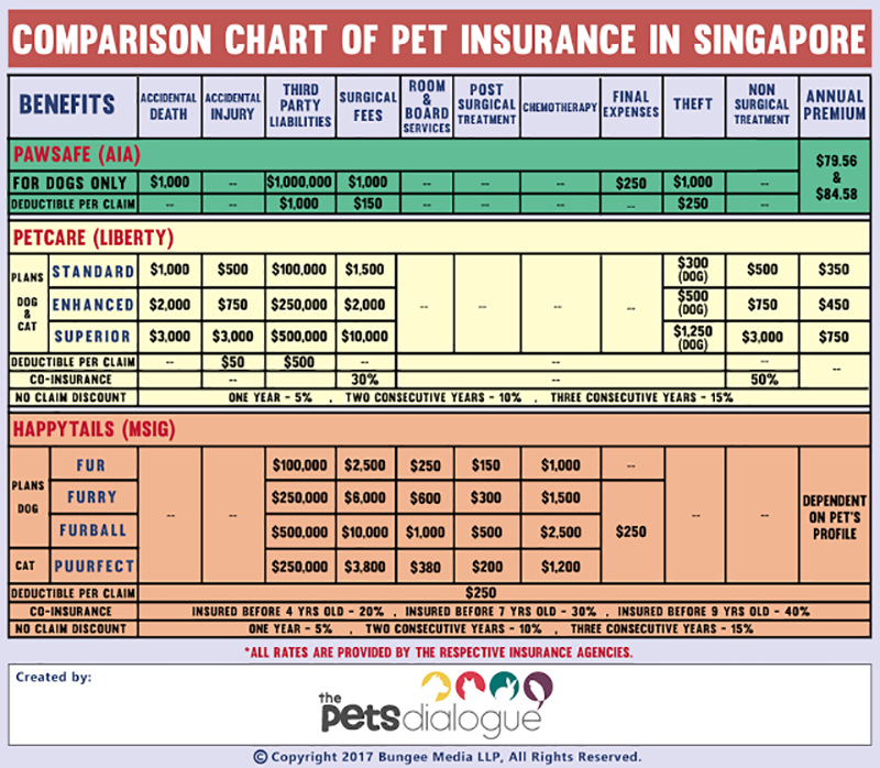 Pet Insurance In Singapore