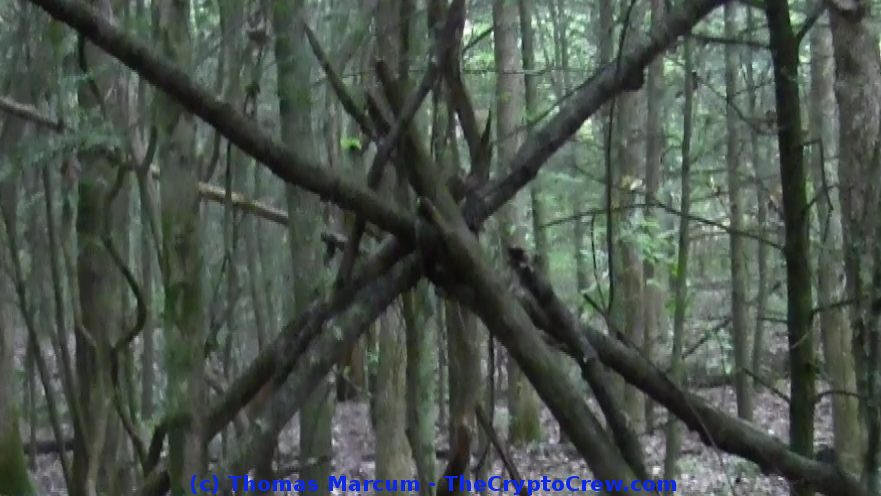 Bigfoot Stick Structure
