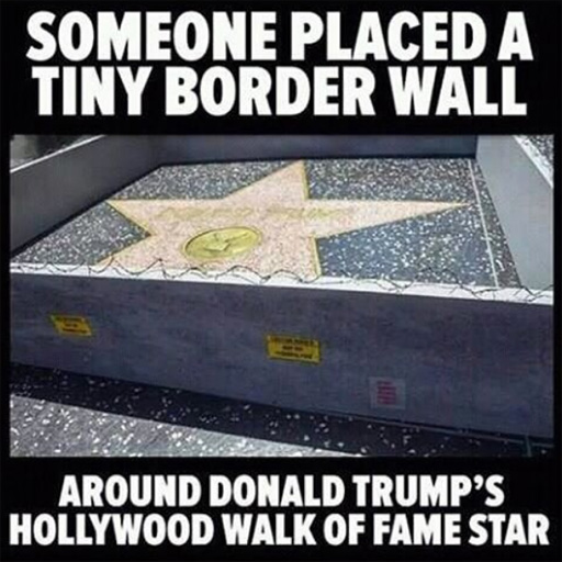 """Someone placed a tiny border wall around Donald Trump's Hollywood Walk of Fame star."