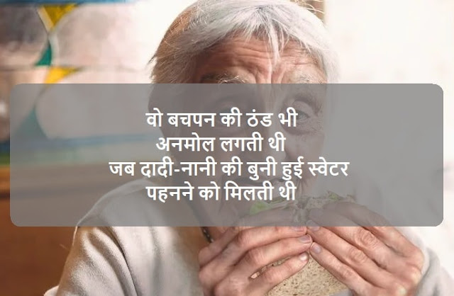 Love You Grandma Status In Hindi and English