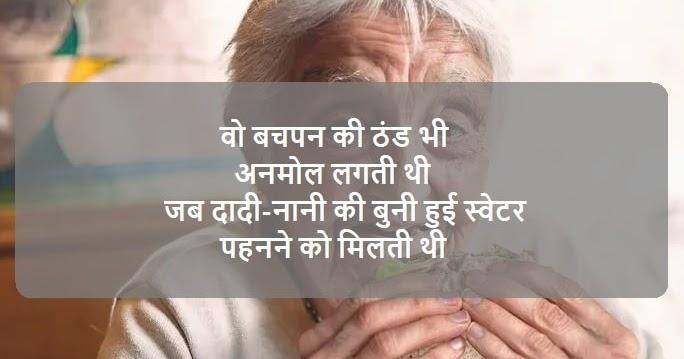 Love You Grandma Status In Hindi and English | Dadi Amma