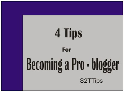 Becoming a Pro-Blogger