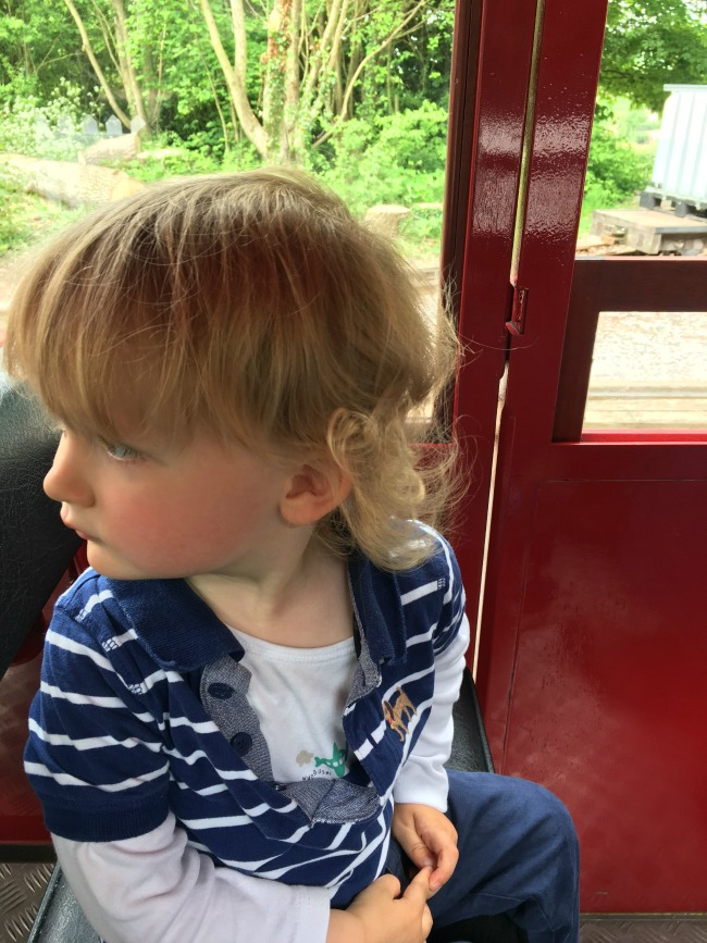 Toddler-sat-in-carriage-at-Perrygrove-Railway