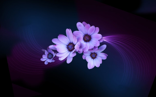 Purple Light Flower Wallpaper 2016 Dekstop