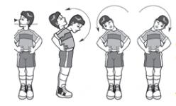 Bentuk Bentuk Olahraga Latihan Kelenturan