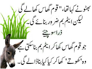 funny sms in urdu images