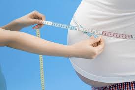 obesity journal