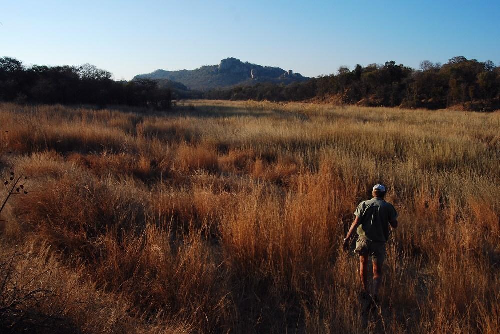 les somptueux paysages du Matopos