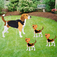 Play Bigescapegames Big Beagle…