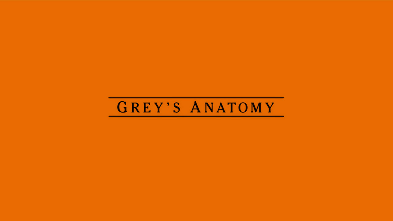 Grey's Anatomy 13x10
