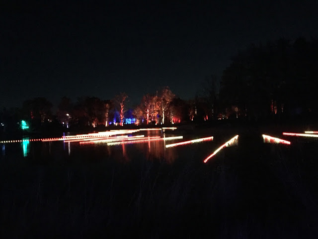 Lights dancing across the water at Illumination at Morton Arboretum