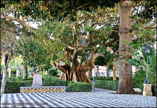 Qué-hacer-en-Cádiz_9